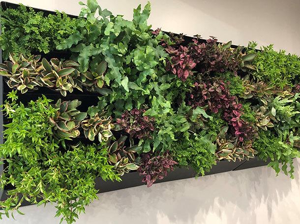 Natures Creation LLC Interior Designer Gallery Item