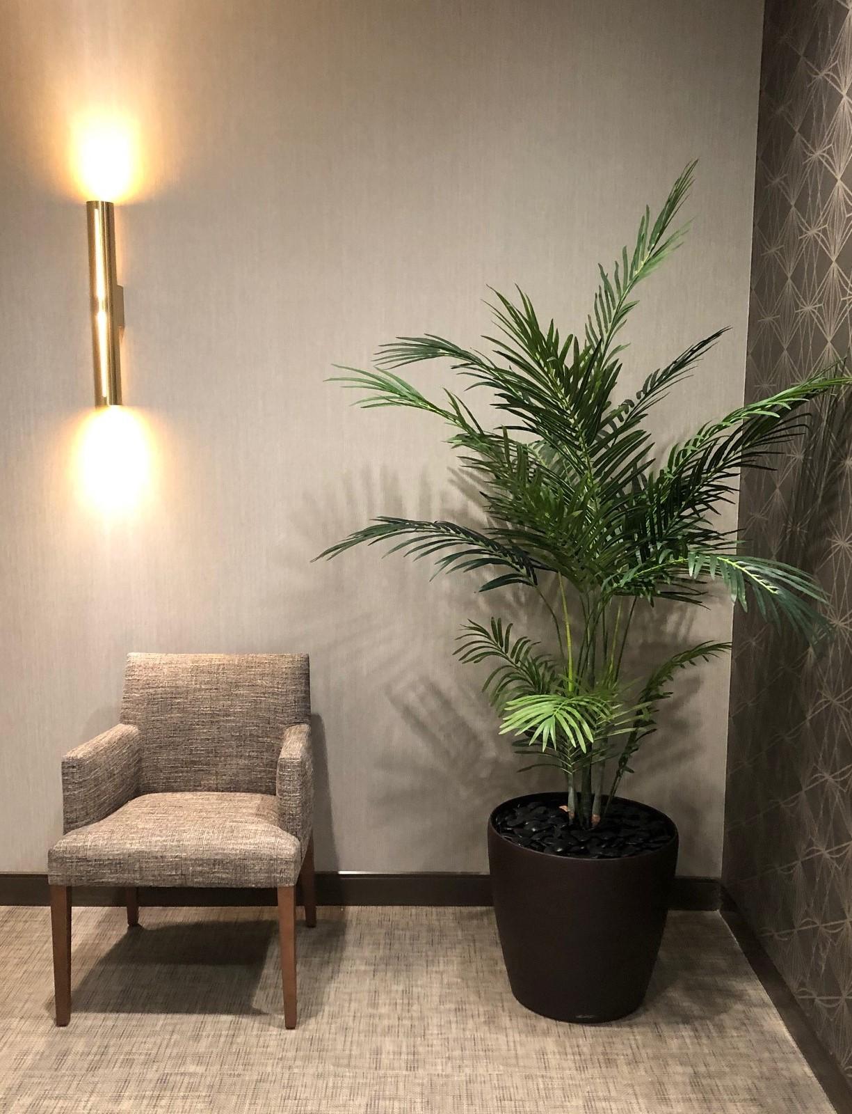 Natures Creation LLC Plant Arrangements